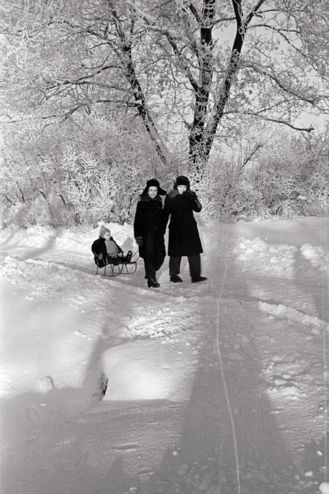 Pere lumises pargis jalutamas, kaks täiskasvanut ja laps kelguga järel. Foto: Valdur-Peeter Vahi. Detsember 1958.