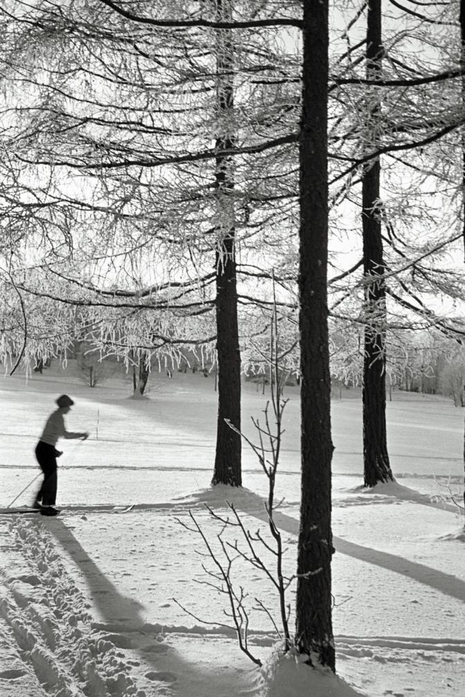 Naine pargis suusatamas. Foto: Valdur-Peeter Vahi. Detsember 1958.
