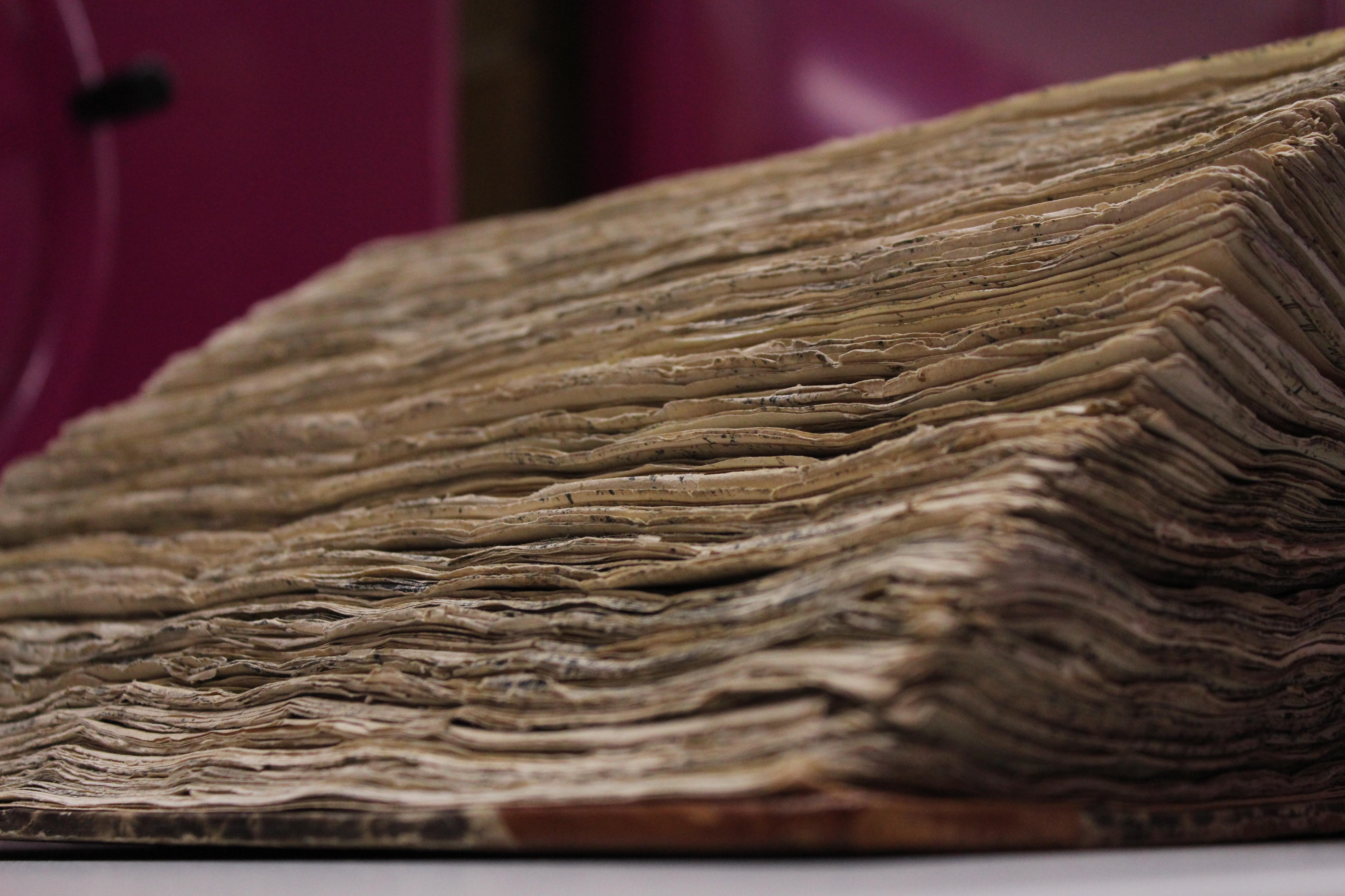 Vana paksu raamatu lehtede servad. Elery Tenson 1