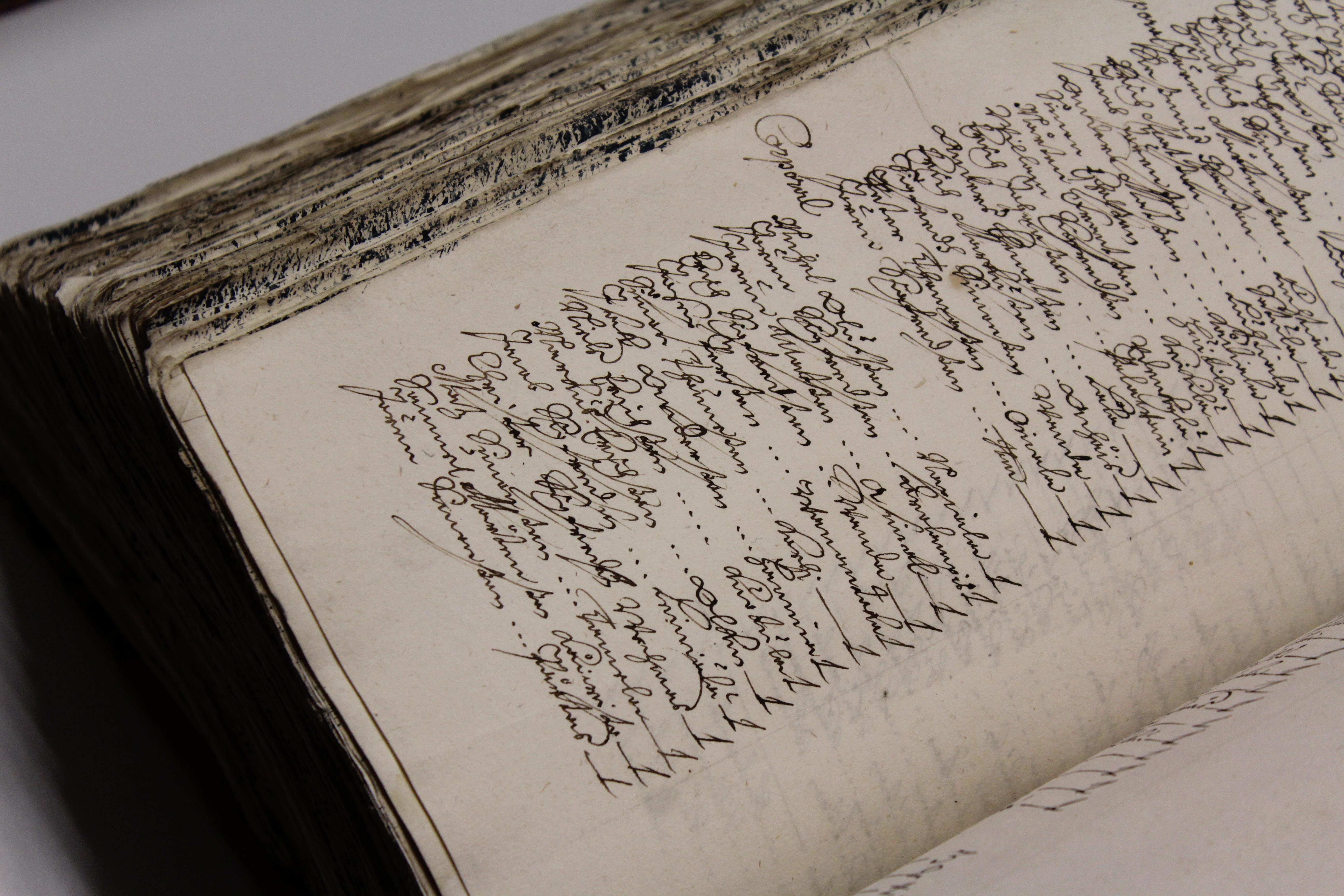 Leheküld vanast raamatust, kus ilusa kalligraafilise käekirjaga ja tindiga kirjutatud tekst. Elery Tenson 2