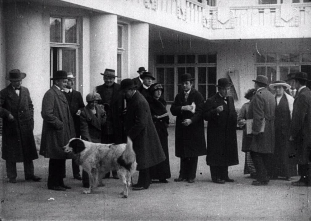 """Kaader kroonikapalast """"""""Estonia"""" rahvateater ja kontserdimaja Tallinnas"""". Rahvahulk ja koer Estonia hoone ees."""