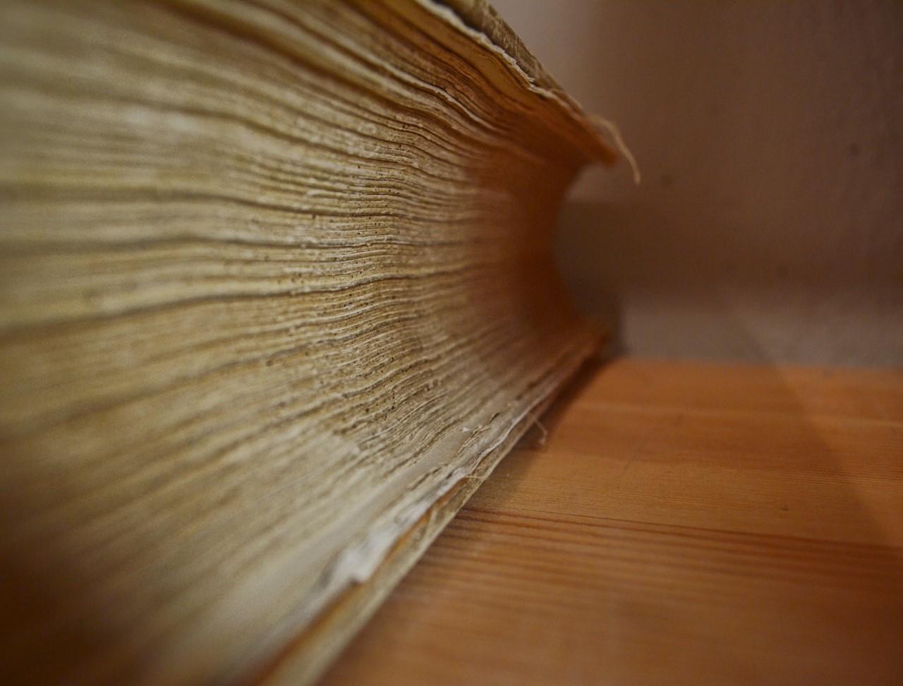 Vana paksu raamatu serv. GreteIlves