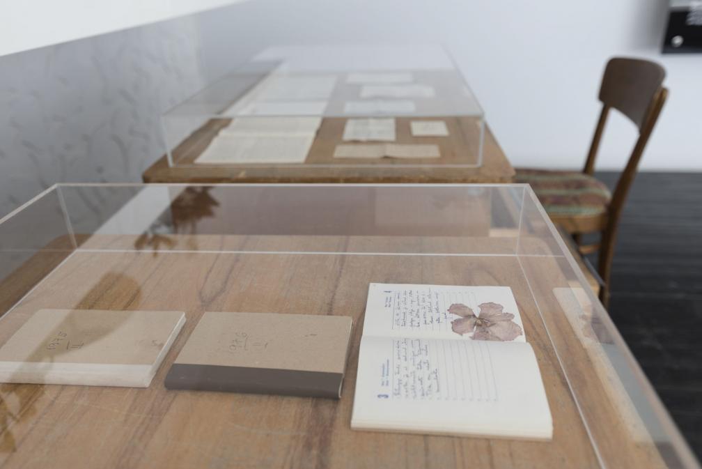 """Näitus """"Benita Labi: Splendid loneliness"""", päevikud."""